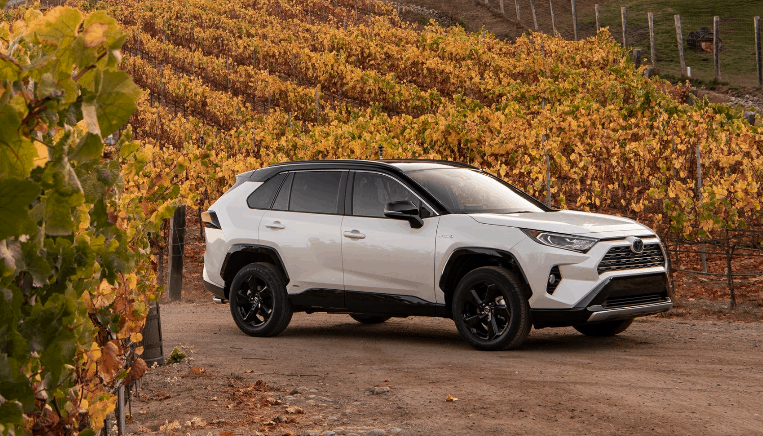 Best SUVs to Drive in Canada 2019 - Toyota RAV4